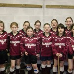 Random image: Girls Indoor Hurling Team